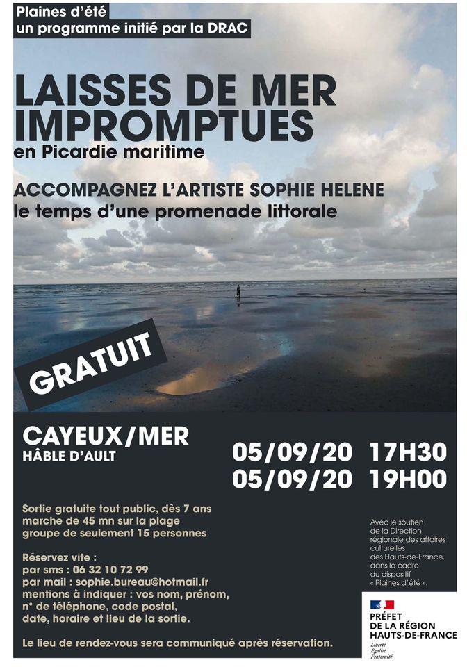 """Affiche des """"laisses de mer impromptues en Picardie maritime"""" avec Sophie Helene."""