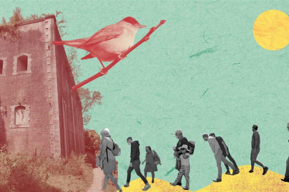 Les chanteurs d'oiseaux en concert à montreuil sur mer
